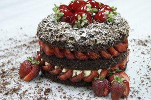 Christmas Festive Cakes & Cookies